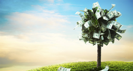 crowdfunding banco